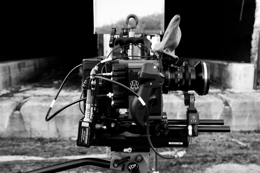 Red Scarlet-w in Nyamup